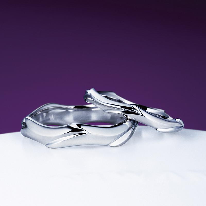 新潟で人気の結婚指輪と婚約指輪 にわか(ニワカ) | にわか(ニワカ)のカッコいいマリッジリング|大海原にゆったりと泳ぐ鯨